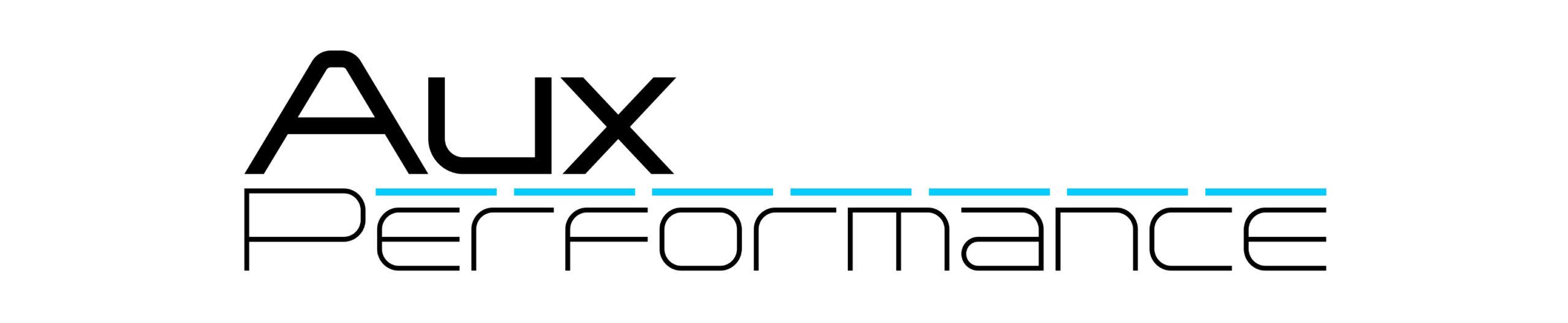 Logo Weiß klein70